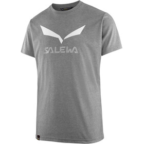 Salewa Solidlogo Dri-Release - T-shirt manches courtes Homme - gris